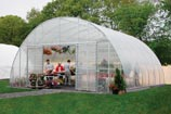 Grow fodder in a greenhouse